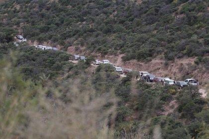 Tras la masacre a nueve personas, incluidos bebés, los familiares huyeron de su residencia en Sonora  (Foto: Cuartoscuro)