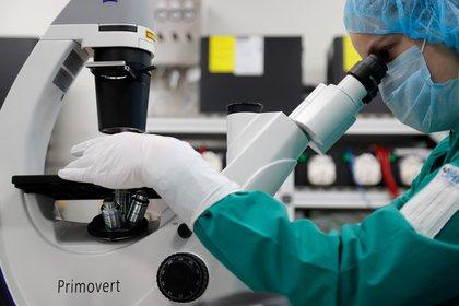 Una científica examina células infectadas por la enfermedad COVID-19 en la búsqueda de una vacuna en el laboratorio BIOCAD en San Petersburgo, Rusia (REUTERS/Anton Vaganov)