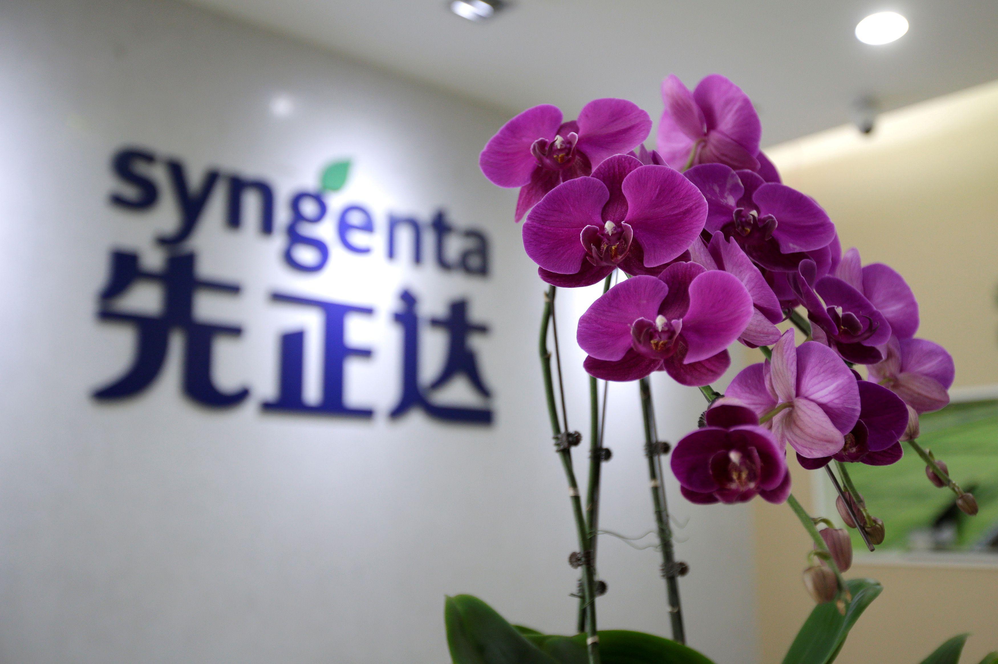 ChemChina, que compró Syngenta en 2017, y Sinochem se unieron y crearon este año el Grupo Syngenta