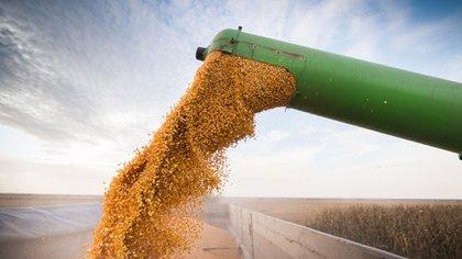 La tecnología es un aliado más en los cultivos