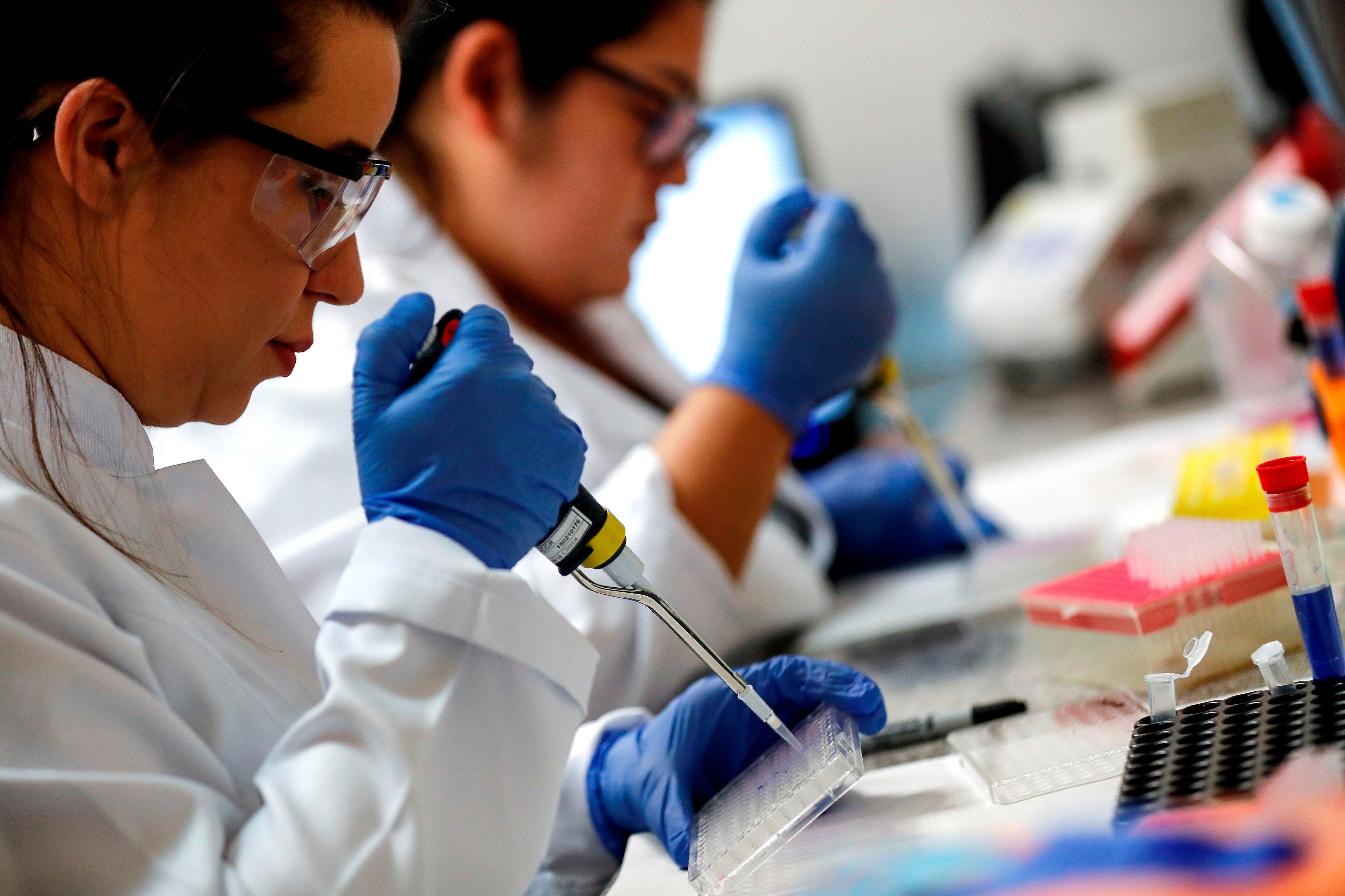 Los investigadores brasileños constataron que la proteína spike de la nueva cepa tiene una mayor fuerza de interacción molecular con el receptor ACE2. EFE/Sebastiao Moreira/Archivo