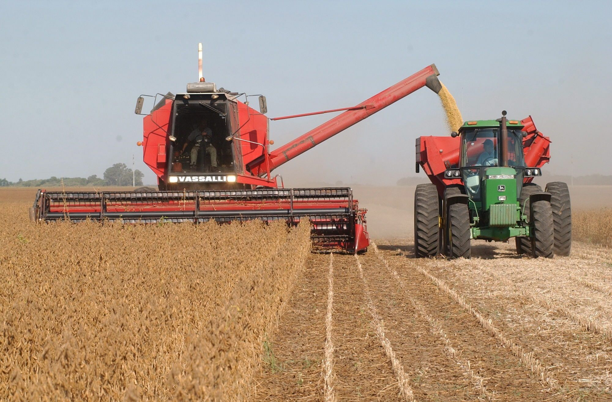 Expectativa por el resultado de la actual cosecha gruesa, en medio de un contexto de aumento de los precios internacionales de cereales y soja