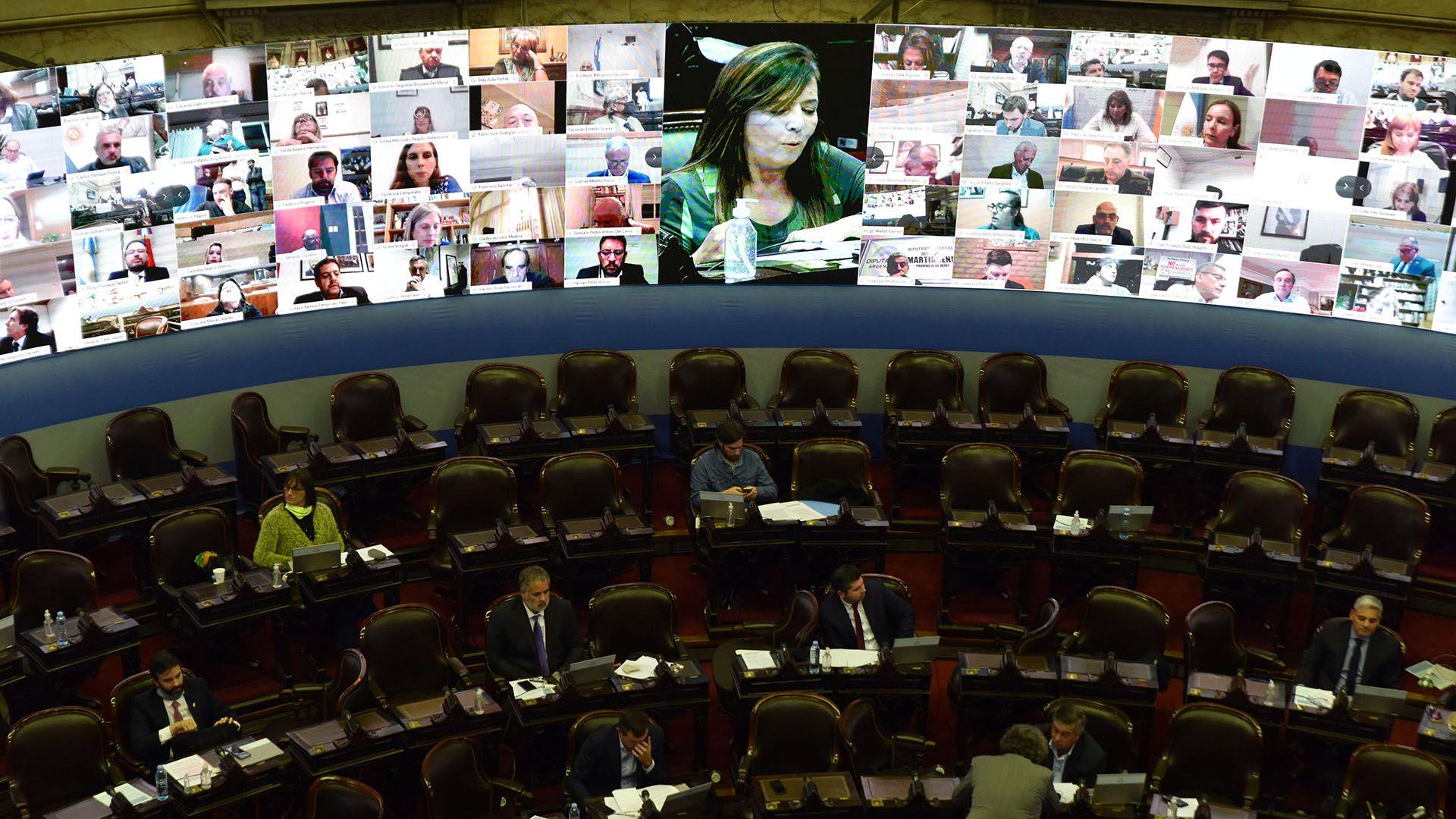Más de 200 diputados siguieron la sesión en forma remota (Franco Fafasuli)