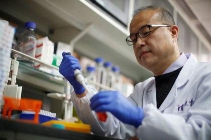 El científico Linqi Zhang trabaja en muestras en su laboratorio para detectar anticuerpos que puedan ser utilizados en tratamientos de prevención contra el covid-19, en el Centro de Investigación de Salud Pública de la Universidad de Tsinghua en Pekín, China. Marzo, 2020. REUTERS/Thomas Peter