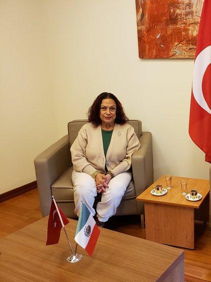 Antes de ser la titular del Consulado en Turquía fue una asidua asistente a las conferencias matutinas de AMLO (Foto: Twitter / @isabelarvide)