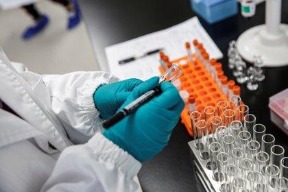 Los plazos dados por Moderna son similares a los de Pfizer, que espera conocer la eficacia de su vacuna en noviembre y tener datos suficientes para solicitar la autorización de la FDA a finales de ese mismo mes. EFE/EPA/WU HONG/Archivo