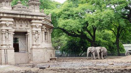 Actualmente hay tres elefantes en el Ecoparque
