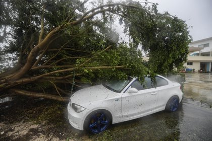 Imágenes de los daños de Delta en Cancún (Foto: Pedro Pardo / AFP)