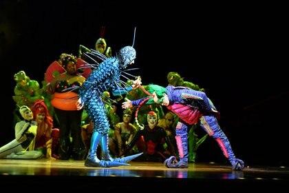 """El """"extranjero"""", la mosca que llega con el huevo misterioso al ecosistema, se enfrenta a Master Flipo, jefe de la comarca (Cirque du Soleil)"""