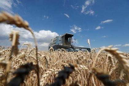 Ya que tiene una incidencia negativa en la producción agropecuaria, el sector viene reclamando desde hace tiempo una eliminación de las retenciones