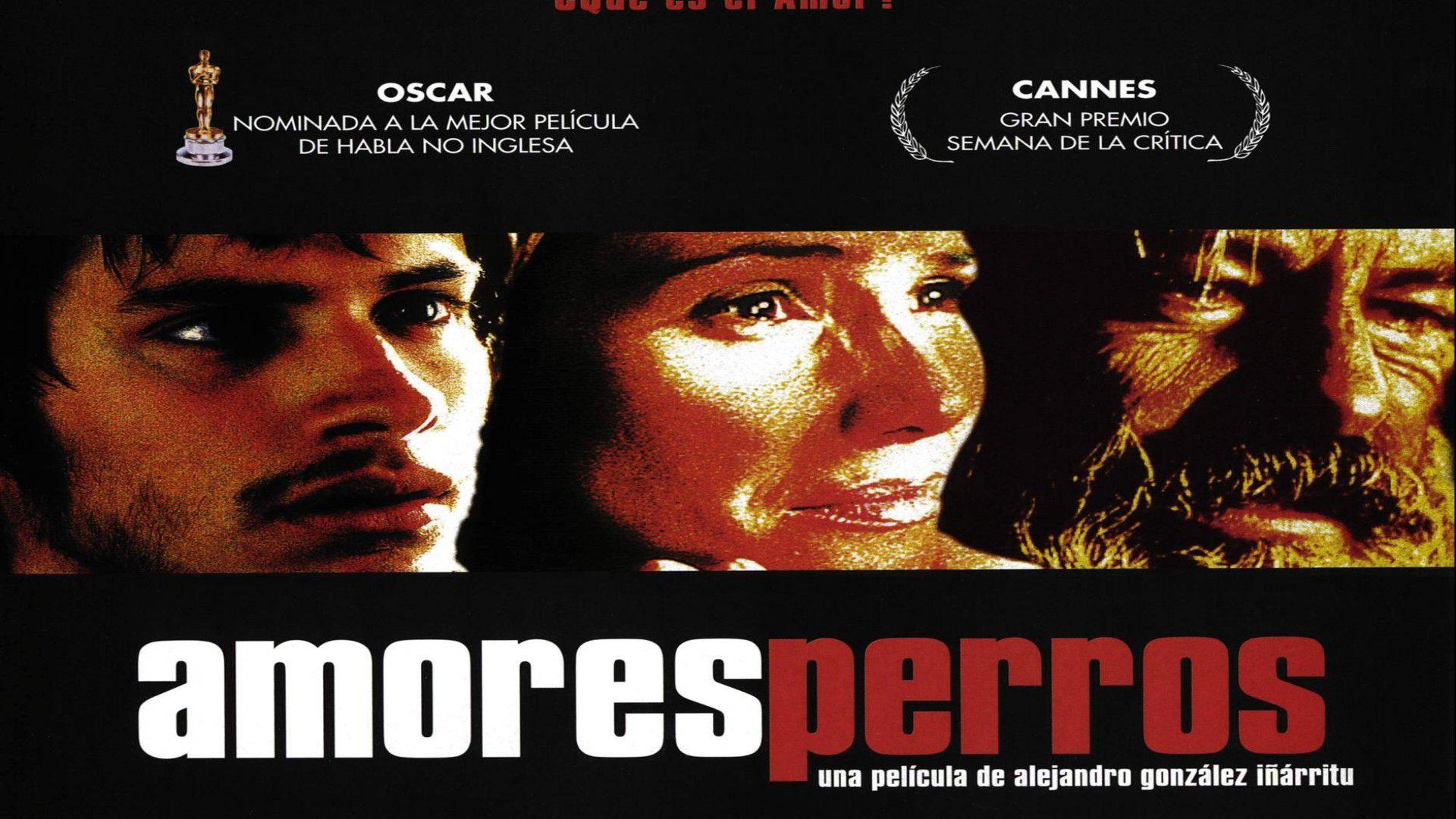 """""""Amores Perros"""" no sólo fue plataforma de la carrera como cineasta de González Iñárritu, también para otros artistas (Foto: Especial)"""