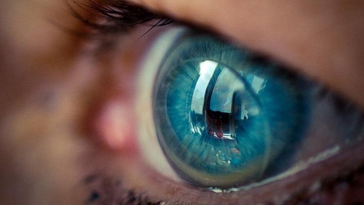 b7414224f9 Lentes de contacto inteligentes, la nueva apuesta de Google - Infobae