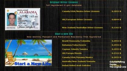 Página dedicada a la venta de pasaportes, tarjetas para conducir y todo tipo de identificaciones oficiales (Foto: Captura de pantalla)