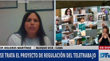 Dolores Martínez, diputada de la UCR, en la sesión de Diputados