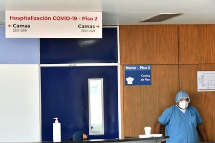 Foto: EFE/ Jorge Núñez