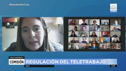 La senadora Maria Belén Tapia pidió que sean escuchados los empresarios