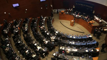 El pasado 14 de septiembre aseguraron que ninguno de los contagios se produjo en las instalaciones del Senado(Foto: Graciela López/ Cuartoscuro)