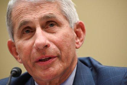 El epidemiólogo jefe de Estados Unidos, Anthony Fauci. EFE/EPA/ERIN SCOTT/Archivo