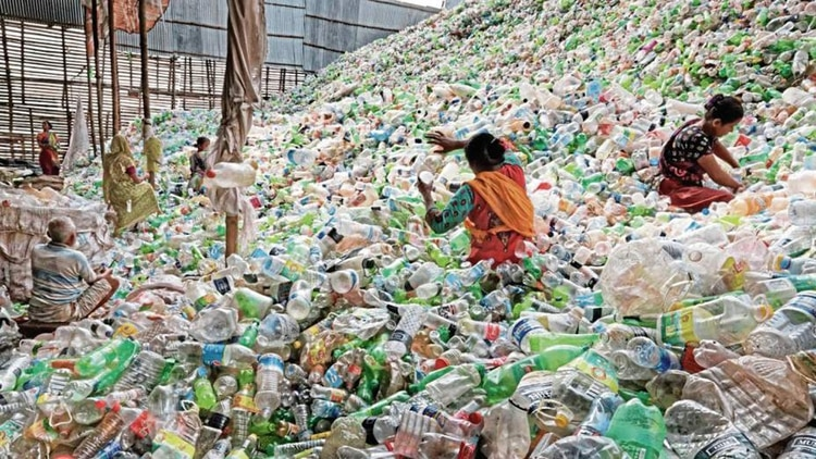 Los recolectores de plástico no dan abasto frente a la acumulación que generan las botellas plásticas (Shutterstock)