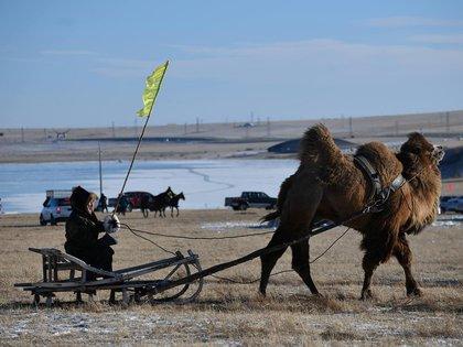 FOTO DE ARCHIVO. Un hombre monta un trineo tirado por un camello en medio de la feria de invierno en Naadam, en Mongolia Interior, China. FOTO DE ARCHIVO. REUTERS/Stringer . ATENCIÓN EDITORES: ESTA IMAGEN FUE PROVISTA POR UNA TERCERA PARTE.