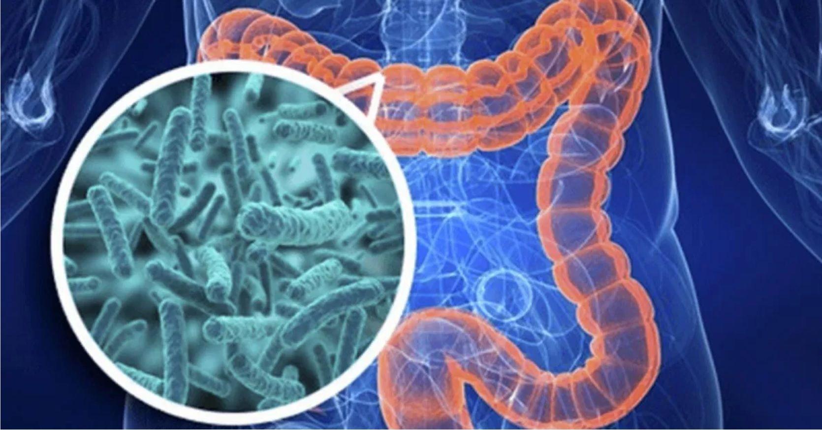 La alimentación es clave a la hora de recibir la inoculación contra el virus SARS-CoV-2