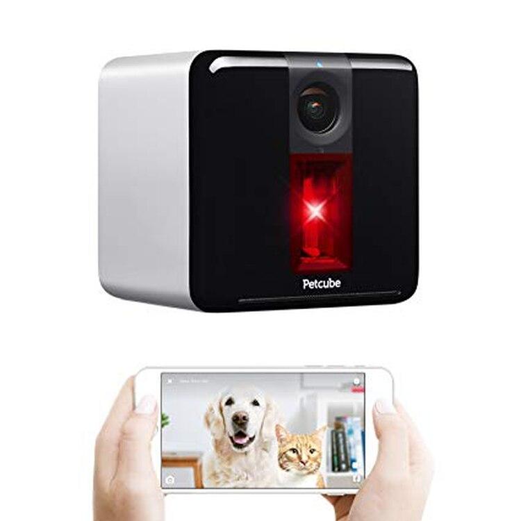 Petcube, una cámara para monitorear a la mascota a la distancia.