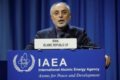 Ali Akbar Salehi, jefe de la Organización de Energía Atómica de Irán (Reuters)