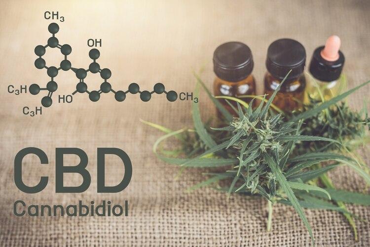 El cannabidiol en dosis controladas es considerado una herramienta efectiva como adyuvante al tratamiento antiepiléptico