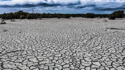 Las impactantes imágenes desde el espacio de la peor sequía de Mexico en años