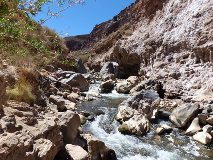Río Calchaquí