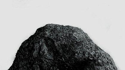 """Detalle de """"La cabeza de Goliat"""" de Eduardo Basualdo"""
