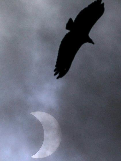 Eclipse parcial observado en Porto Alegre, Brasil - REUTERS/Diego Vara