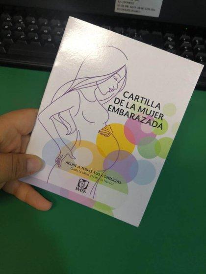 Cartilla de la mujer embarazada Foto: twitter @IMSSGro