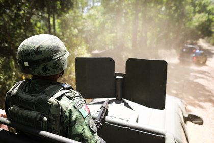 General view of a member of the Army during the operation to destroy a camp and clandestine laboratory next to four hectares of coca plants (Photo: EFE)