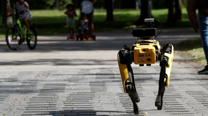 A four-legged robot dog called SPOT patrols a park as it undergoes testing to be deployed as a safe distancing ambassador, following the coronavirus disease (COVID-19) outbreak, in Singapore May 8, 2020. REUTERS/Edgar Su