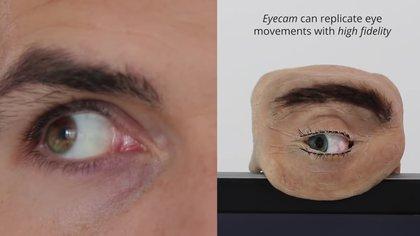 Eyecam replica los movimientos del ojo ocular con mucha precisión y es capaz de ver y reconocer el entorno así como a la gente que tiene delante.