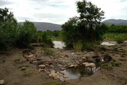 La frontera entre Colombia y Venezuela es un terreno selvático y fangoso