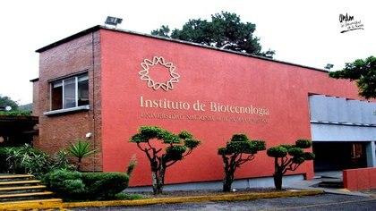 (Foto: Instituto de Biotecnología, campus Morelos)
