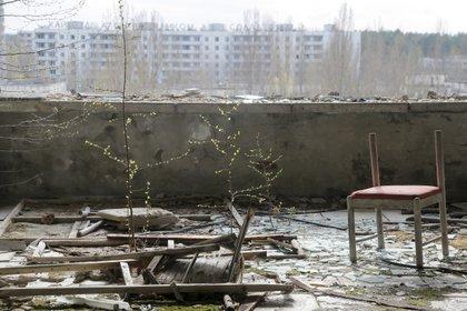 Esta foto fue tomada en2017 en la ciudad desierta de Pripyat, a 3 kilómetros de la planta de Chernobyl, Ucrania. Fue elhogar de 50.000 personas hasta la explosión del 26 de abril de 1986. (AP Photo / Efrem Lukatsky)
