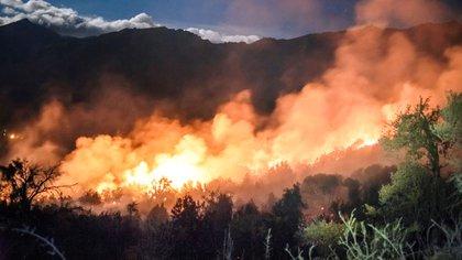 El fuego arrasó 1.178.088 hectáreas en los últimos 14 meses. equivale a 59 veces la superficie de la Ciudad de Buenos Aires.(@alejandrochaskielberg)