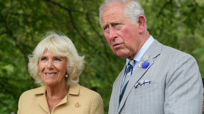 Mandatory Credit: Photo by Tim Rooke/Shutterstock (10338529ff)