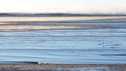 El mar congelado (Foto: gentileza de Marcos Sejas)