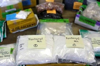 Bolsas de plástico de fentanilo se exhiben en una mesa del área de Aduanas y Protección Fronteriza de EEUU, en el Aeropuerto Internacional O'Hare en Chicago, Illinois. 29 de noviembre de 2017. (Foto: REUTERS/Joshua Lott)