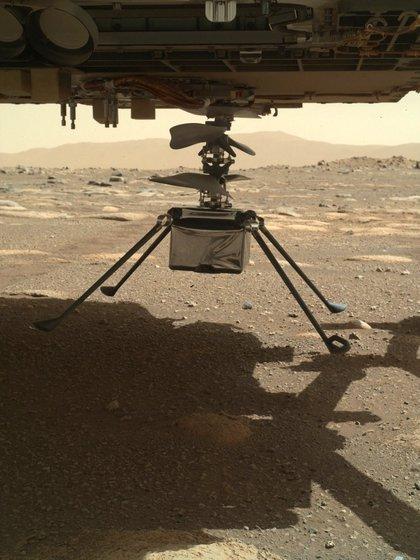 El robot Perseverance toma una fotografía el 31 de marzo con el helicóptero Ingenuity debajo suyo, luego de desplegarlo en la superficie marciana / NASA/JPL-Caltech