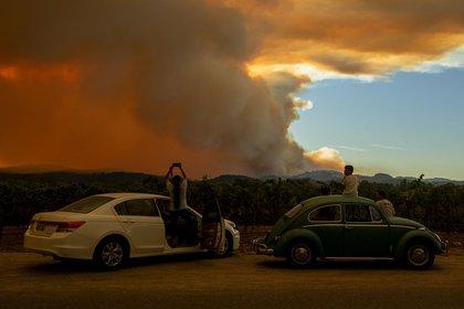 Un incendio cerca de un viñedo en Healdsburg, California (JOSH EDELSON / AFP)