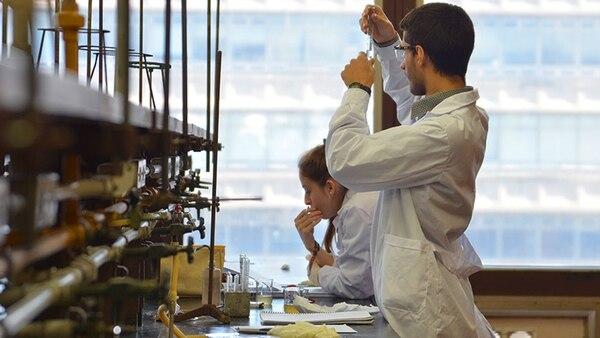 """Viaje en el tiempo: científicos argentinos """"reviven"""" proteínas extintas para entender su evolución"""