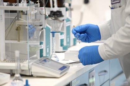 """Los tres escalones del dogma central de la biología molecular tienen un """"representante"""" en las tecnologías que se estudian en las vacunas en estudio para prevenir el COVID-19 (Efe)"""