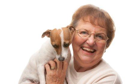 Investigaciones afirman que la interacción entre una persona y una mascota disminuye la presión arterial y aumenta los neuroquímicos asociados con la relajación