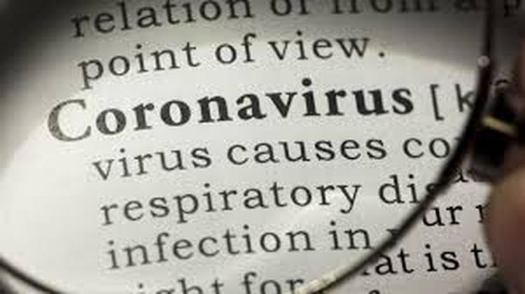 Covidiota, infodemia, coronials o zoompleaños son algunos de los nuevos términos del glosario de la pandemia alrededor del mundo (ONU)