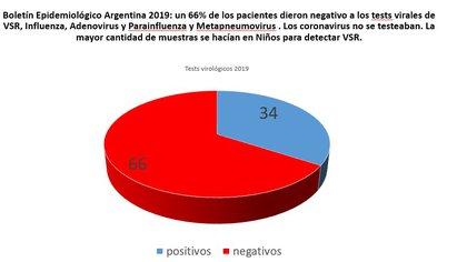 Imagen 3 - Boletín Epidemiológico Argentina 2019: un 66% de los pacientes dieron negativo a los tests virales de VSR, Influenza, Adenovirus y Parainfluenza y Metapneumovirus . Los coronavirus no se testeaban. La mayor cantidad de muestras se hacían en niños para detectar VSR